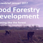 AE food forestry